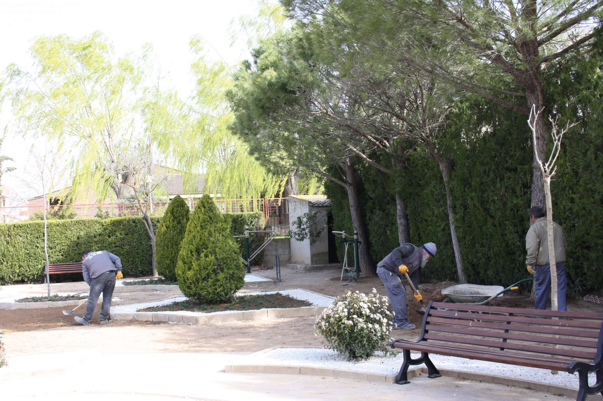 Plan De Empleo – Jardinería
