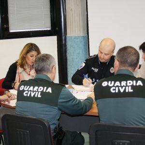 Reunión De La Mesa Técnica De La Junta Local De Violencia De Género