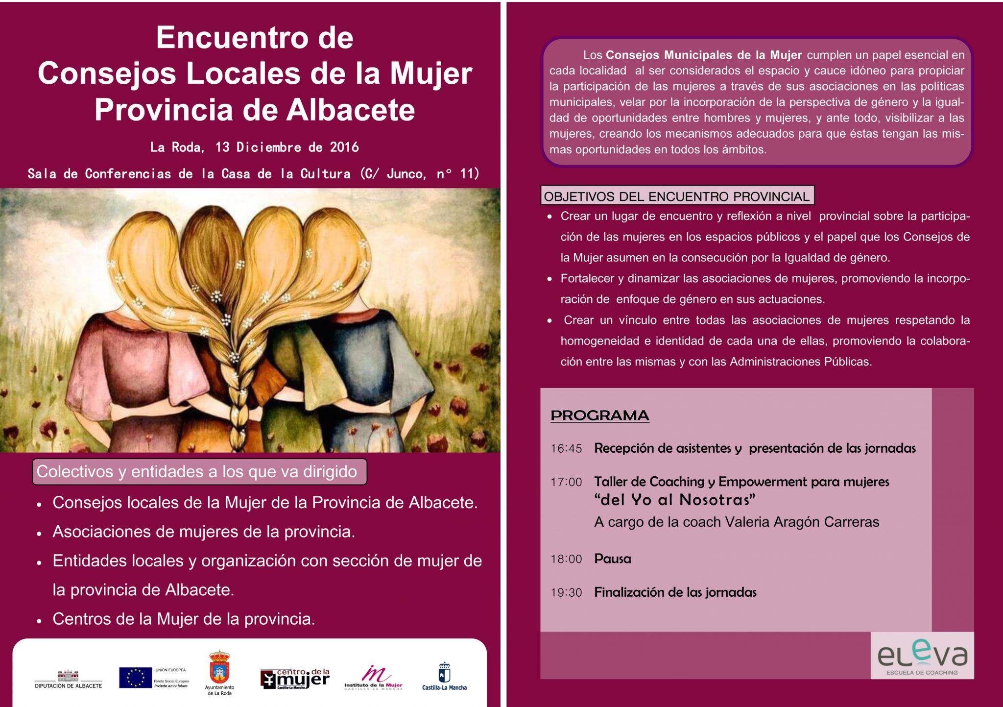 Encuentro Provincial De Consejos Locales De La Mujer