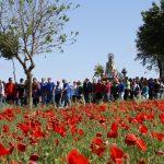 Centenares De Romeros Acompañarán En Romería A Su Patrona
