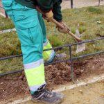 El Ayuntamiento Realiza Una Intensa Replantación De Sus Zonas Verdes