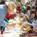 Jornadas Del Día Del Libro En La Roda