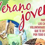 Campos De Voluntariado Juvenil 2018