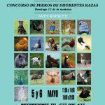 La Caja Blanca Acogerá Una Feria De Mascotas