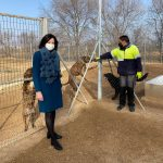 El Ayuntamiento Estudia Mejoras En La Perrera Municipal