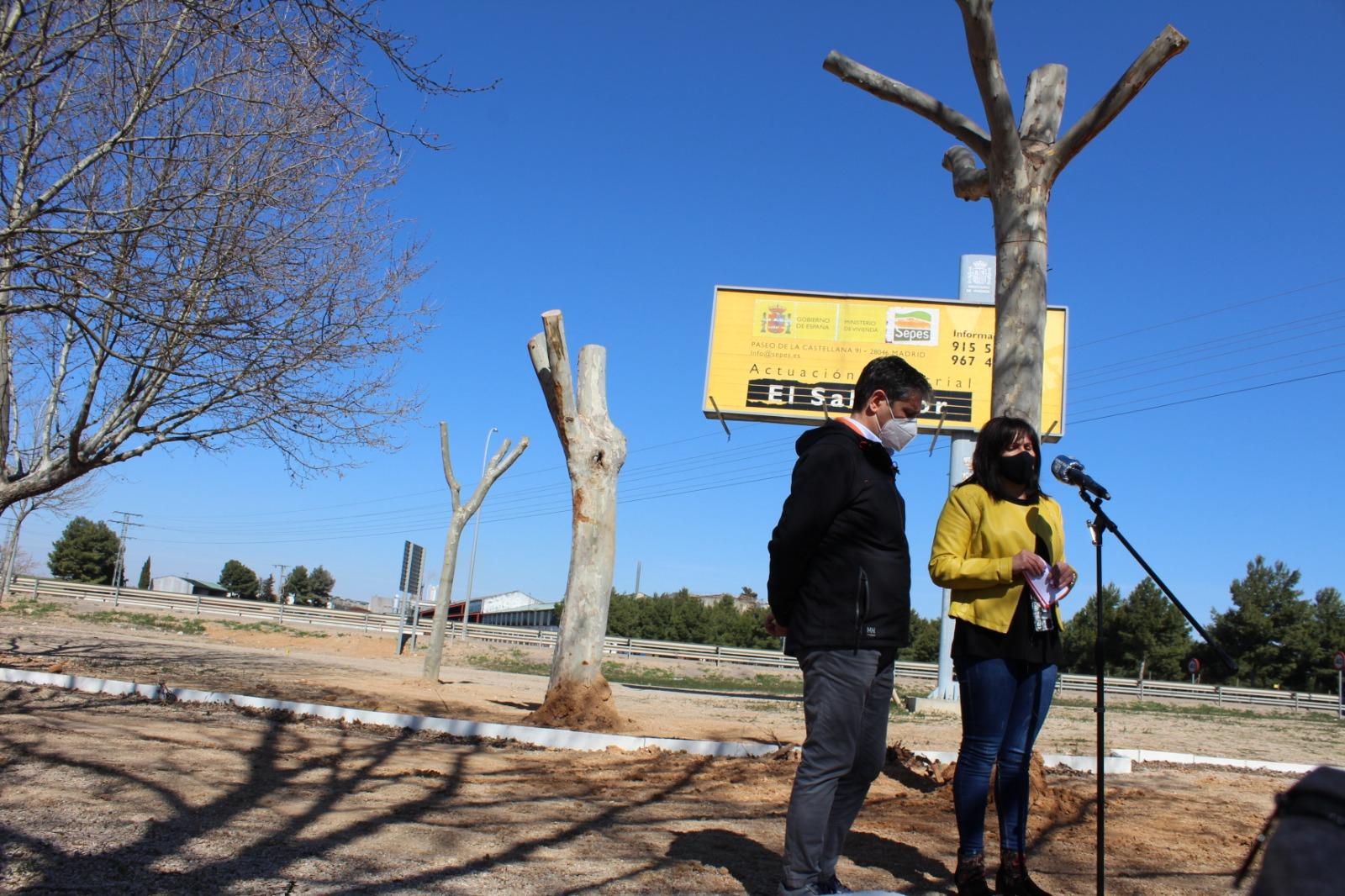 Trasplantados Los árboles De La Calle Castelar
